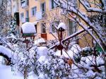 W zimowym nastroju