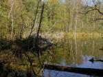 OTWOCK. Jezioro Torfy