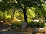 WARSZAWA W OBIEKTYWIE (kolekcja albumów): Zielony oddech Warszawy - Park Praski