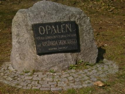 Zielony oddech stolicy: Polana Opaleń w Puszczy Kampinoskiej