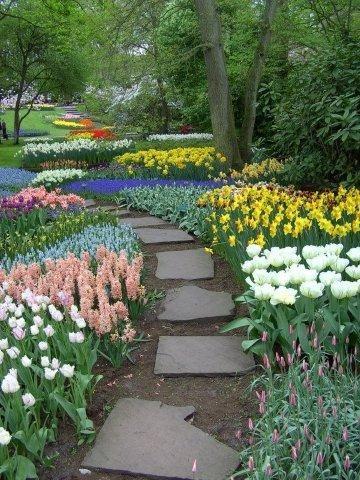 Holenderski rajski ogród